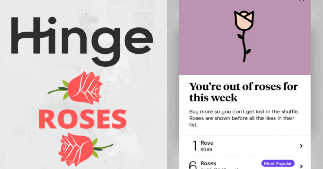 Hinge App Introduces New Feature